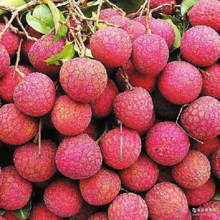 预售 新鲜荔枝 大量供应广西特产荔枝 欢迎预约上门拉货