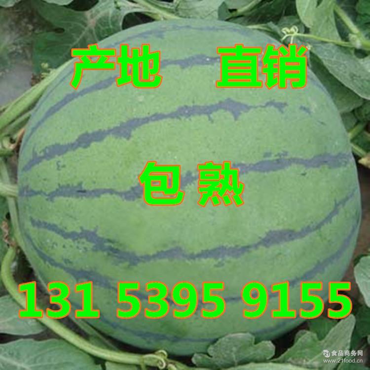 西瓜哪里便宜 在哪里西瓜_哪里产西瓜 批发哪里 西瓜