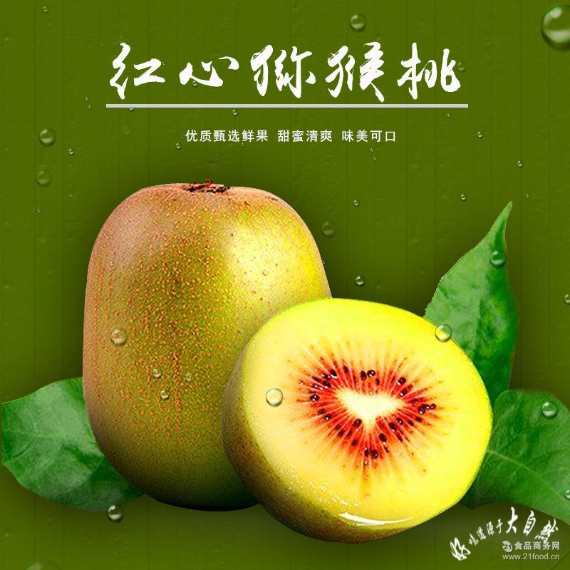 蒲江猕猴桃 红心奇异果批发 电话18982077650 新鲜水果欢迎选购