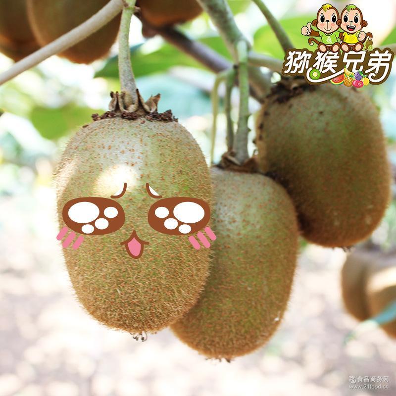 陕西眉县 奇异果新鲜水果5斤30个一件代发 绿心徐香 包邮 猕猴桃