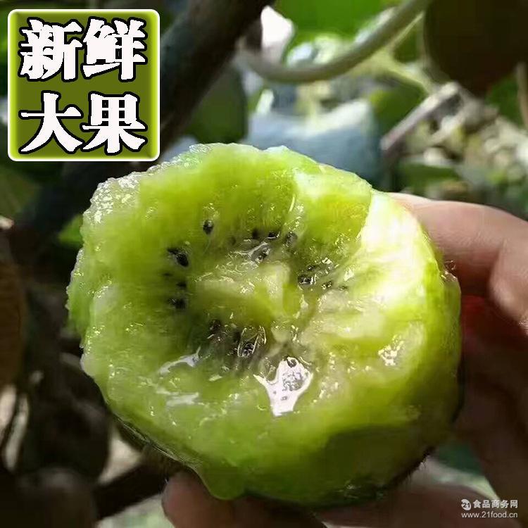 纯甜】徐香猕猴桃5斤大果 单果90-130克 【大促专享