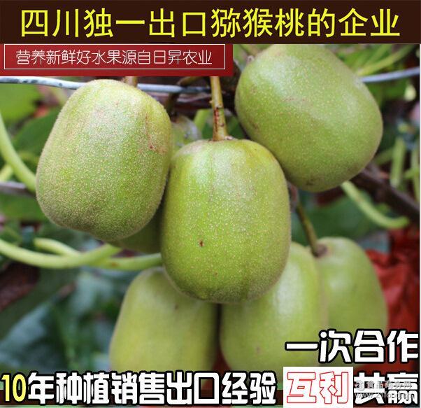 厂家直销特价 2017年预售苍溪日昇正宗红心猕猴桃 10斤箱装