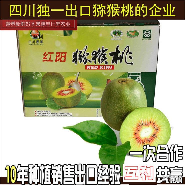 2017预售无现货 供应散装猕猴桃 出口级优质红心猕猴桃100-110g