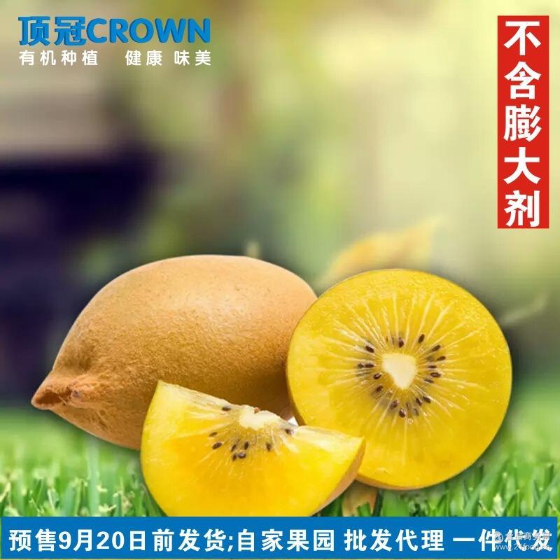 顶冠CROWN 四川鸭嘴金果奇异果 有机黄心猕猴桃70-90g大果15个