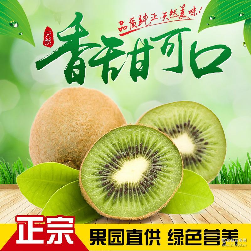 [包邮]江山徐香绿心猕猴桃新鲜水果奇异果一盒6只试吃装代理批发