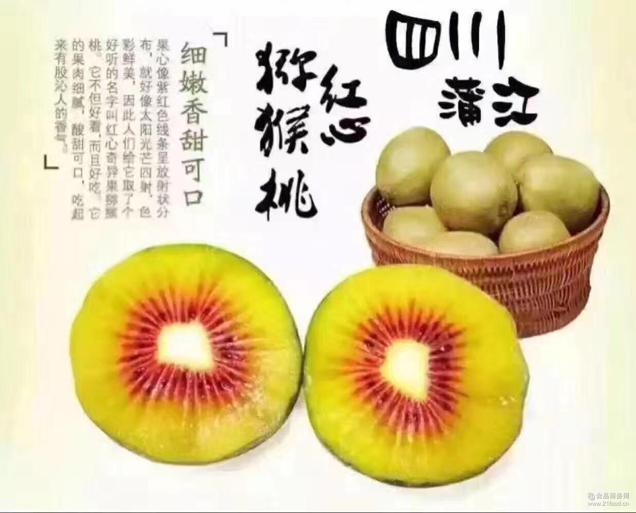 四川省蒲江红心猕猴桃果园直发80g~90g