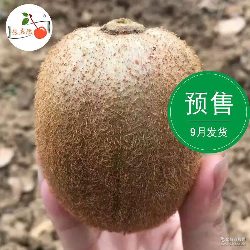 新鲜预售9月发货陕西眉县徐香猕猴桃1斤装