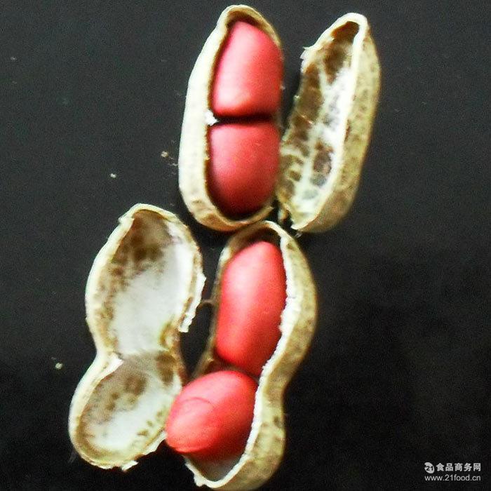产地直销 广源养胃小红花生 四川特产 有机花生 满5斤 包邮