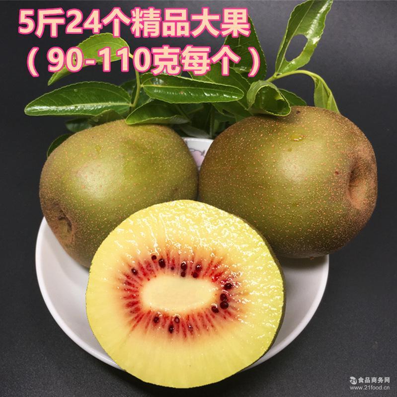 四川眉山红心猕猴桃红阳奇异果蒲江 5斤24个装