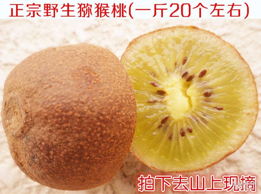 新鲜猕猴桃奇异果野生猕猴桃小个猕猴桃原生态猕猴桃5斤包邮