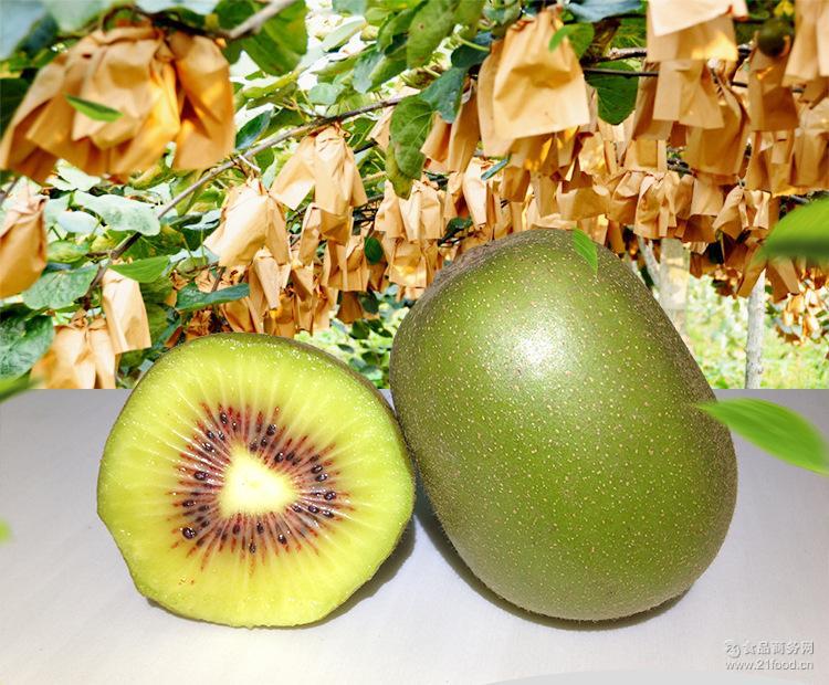 新鲜水果四川蒲江红心猕猴桃浦江红心猕猴桃奇异果孕妇水果包邮