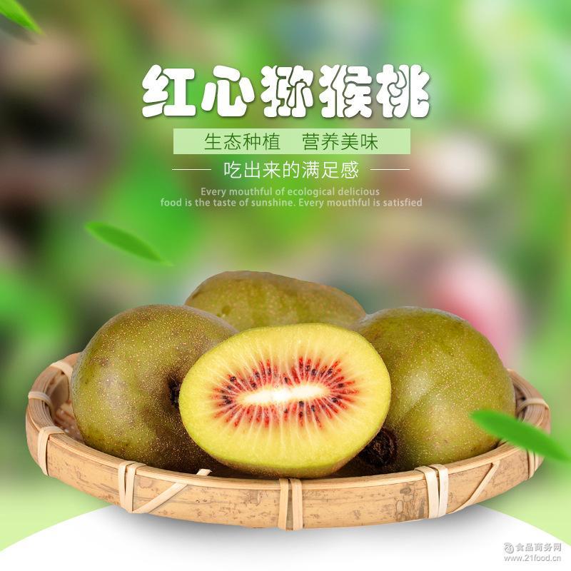 红心猕猴桃果园现摘现发新鲜水果一手货源 四川蒲江特产水果