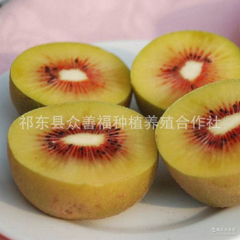 农村特产量大优惠 维生素之王 营养果汁猕猴桃