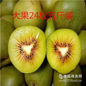 预售 厂家直发 雅安红心牛背土猕猴桃24枚五斤奇异果 量大从优