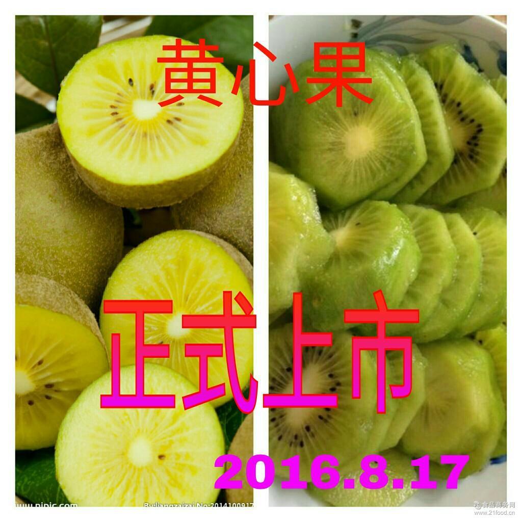 原生态猕猴桃 王黄一号 无公害黄心果 猕猴桃