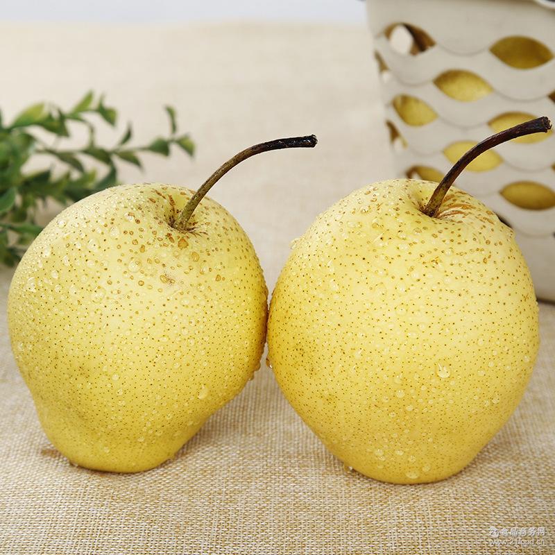 汁多甜美 口感酥脆 苍溪特产雪花梨产地直批 新鲜水果