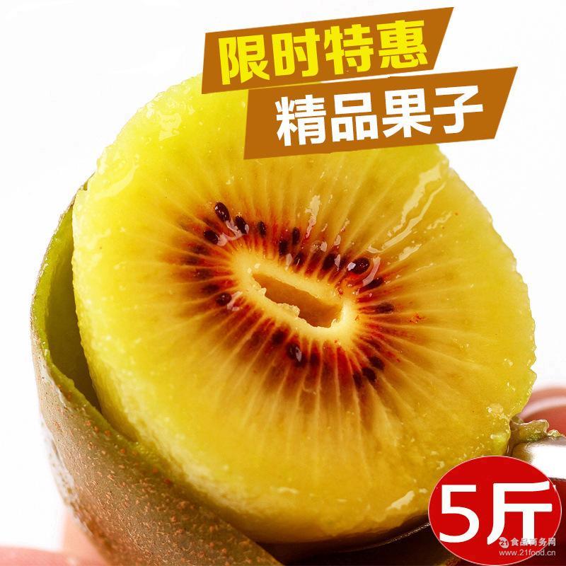正宗蒲江红心猕猴桃 预售 新鲜水果奇异果产地批发 猕猴桃 红心