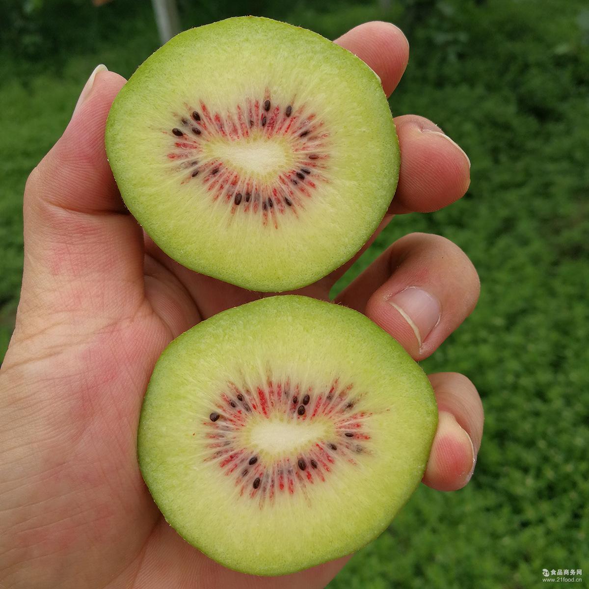 蒲江红心猕猴桃奇异果新鲜包邮时令水果当季四川特产12粒泥弥猴桃