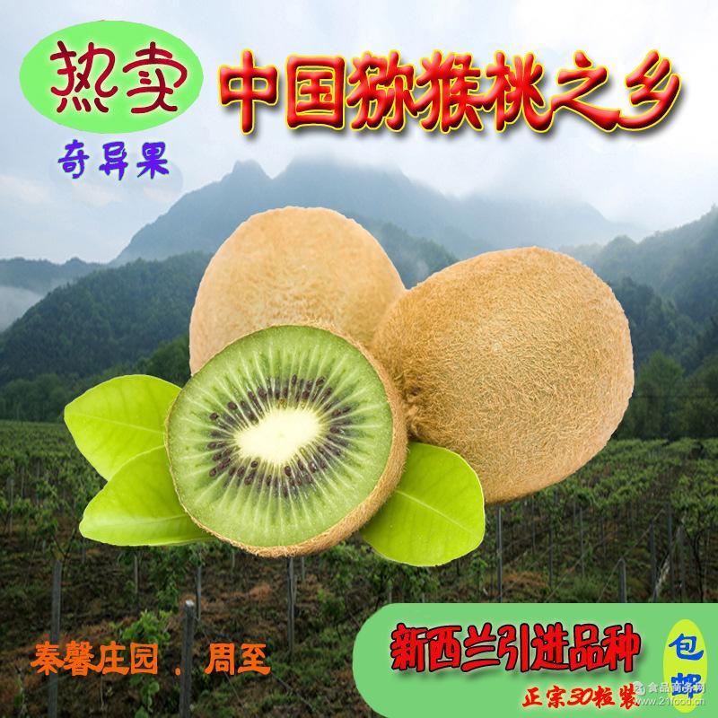 现货包邮30粒周至海沃德猕猴桃奇异果新鲜绿心水果包邮