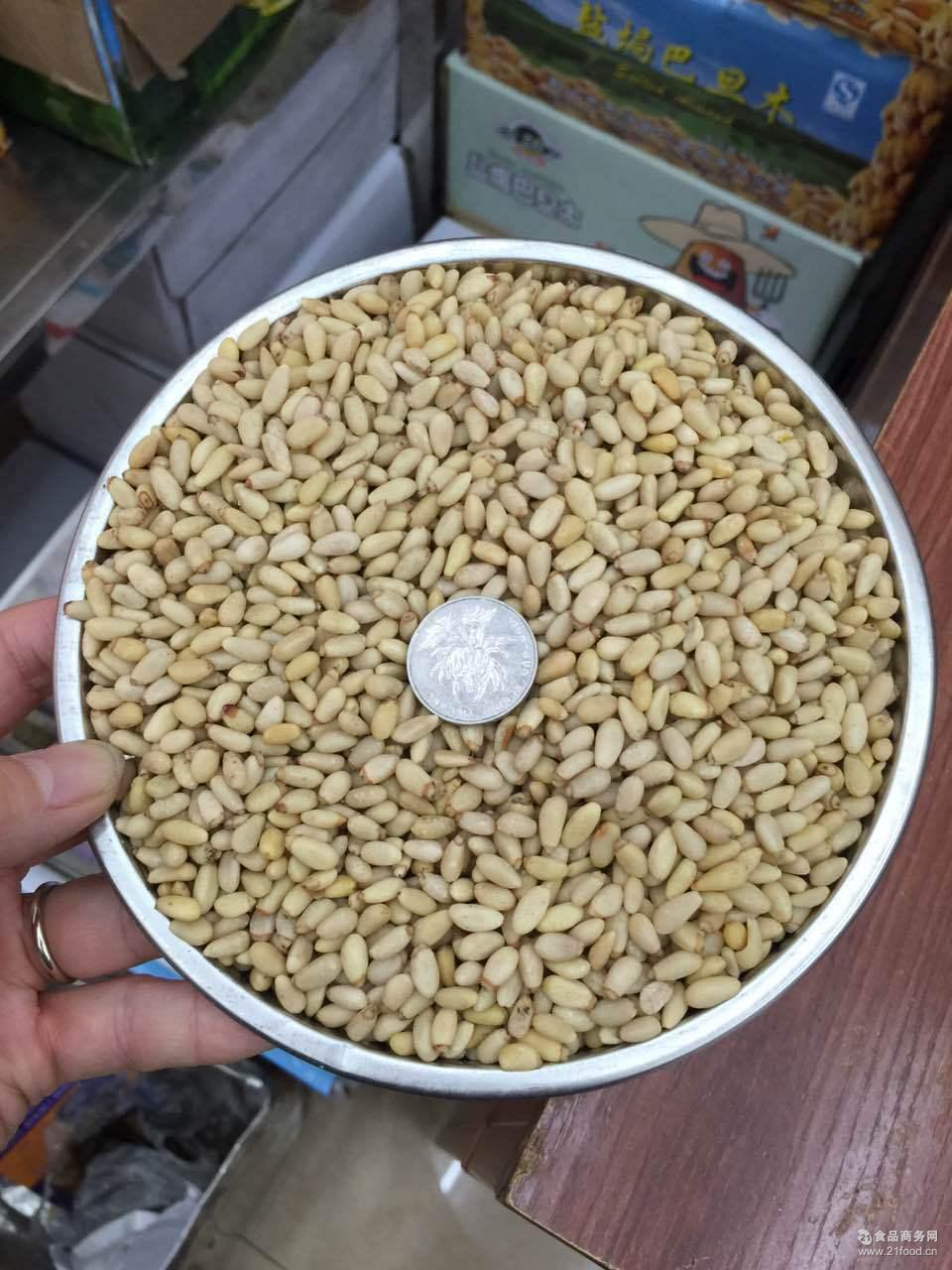 产地货源华山松生松子仁散装原味粉非手剥不开口500g吉林新货松籽