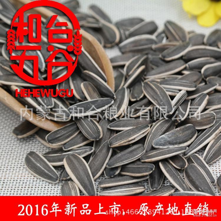 原产地直销 2016新品 363生葵花籽内蒙古优质葵花籽 精品
