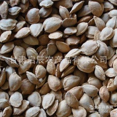 杏仁露原料 供应甘肃产优质苦杏核 药材原料