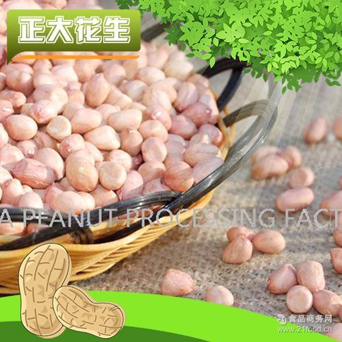 优质白沙花生米 精选白沙花生米 大白沙花生米35-40 厂家直销