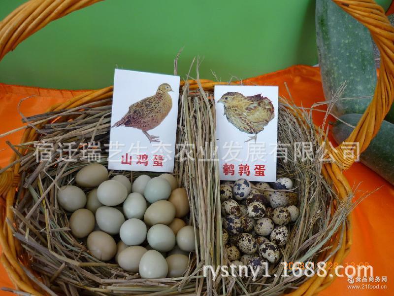 鹌鹑蛋批发 野生鹌鹑蛋 鹌鹑生态养殖长期供应鹌鹑蛋 土鹌鹑蛋