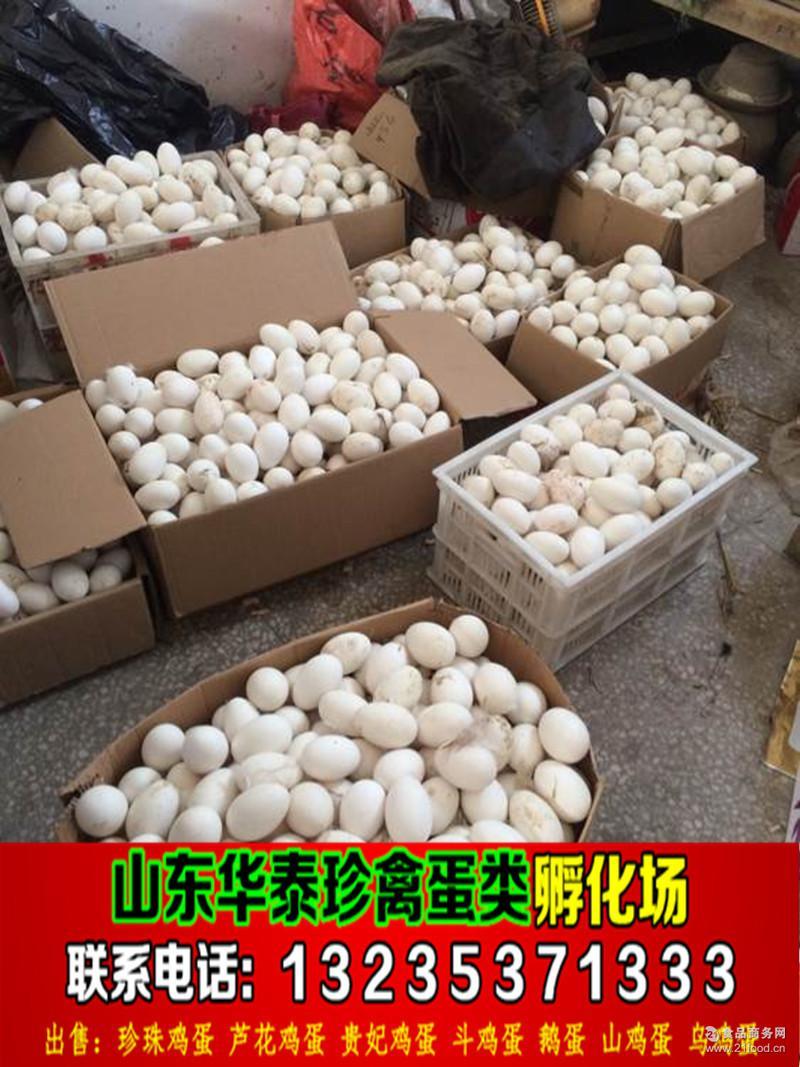 2017年今日鹅蛋价格与全国鹅蛋产地批发平均价格