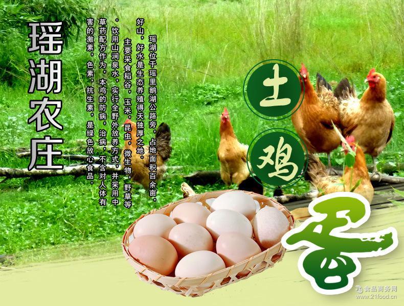 孕妇小孩 火爆热销高营养绿壳土鸡蛋礼盒装 喂稻谷 喝山涧水