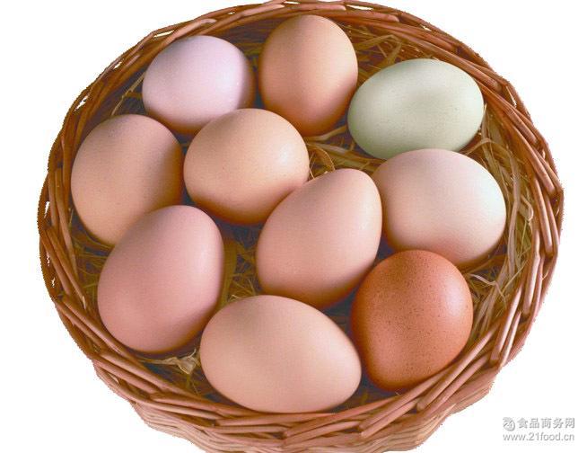 康嘉贝66农户鸡蛋30枚礼盒装贵州土鸡蛋正宗土鸡蛋
