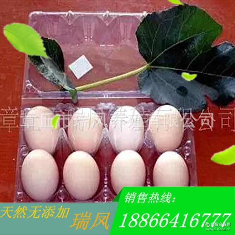 安全健康营养价值高。五谷喂养 草鸡蛋 林间散养优质土鸡蛋
