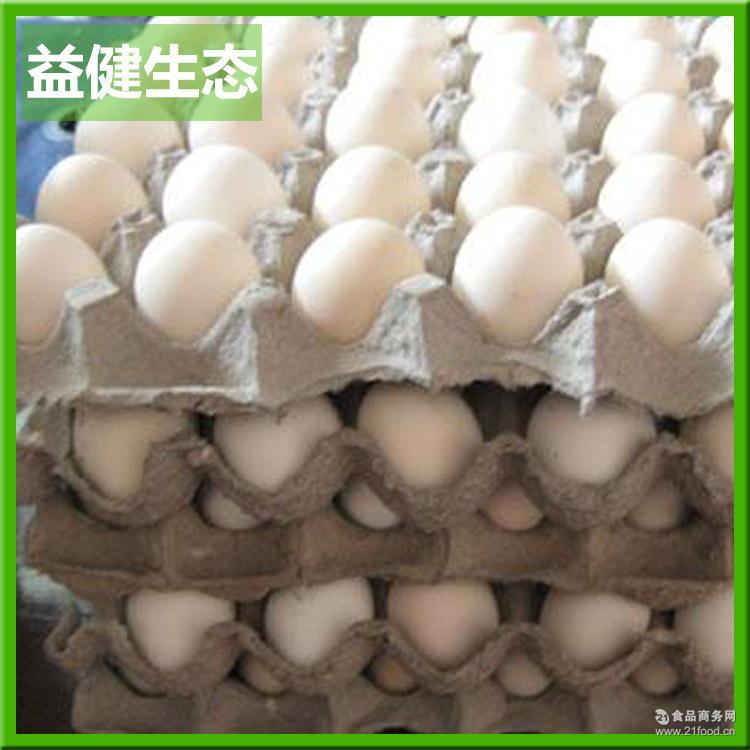 热销推荐 蛋鸡孵化种蛋 常年纯种草鸡种蛋