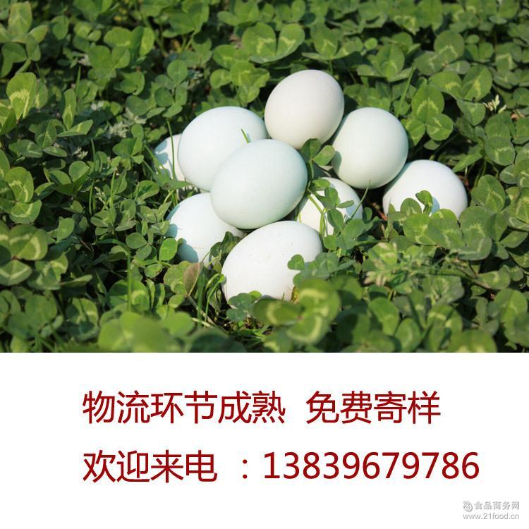 直销批发口感好营养丰富 优质柴鸡蛋 华威鸡蛋养殖场 草鸡蛋