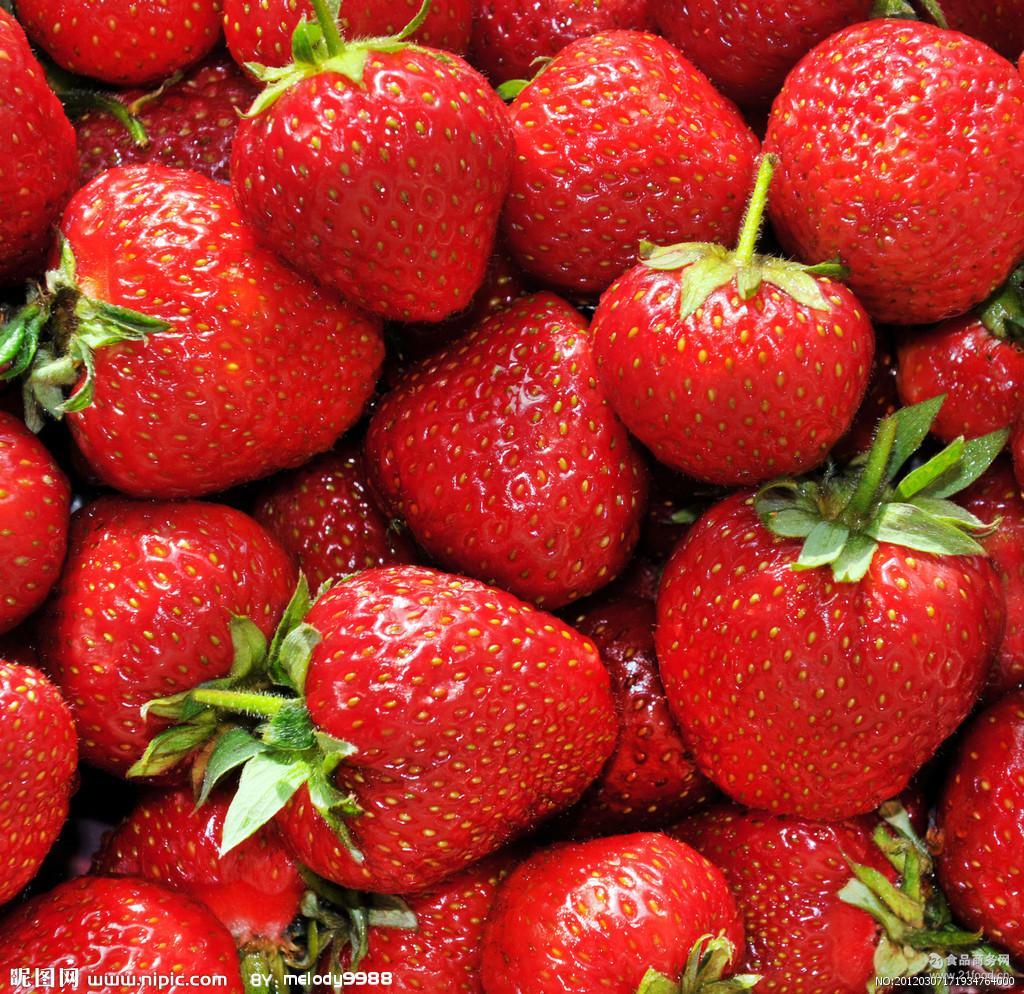 水果专用背景图片素材