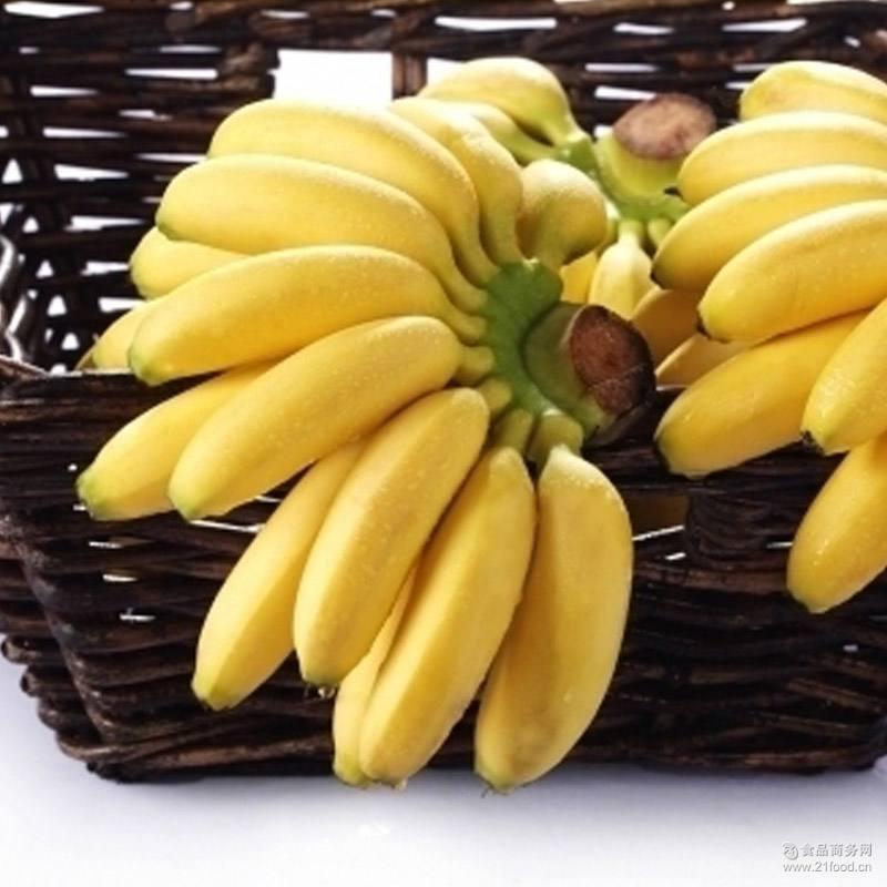 广西小米蕉农家芭蕉粉蕉非帝王蕉孕妇水果批发包邮小香蕉新鲜3斤