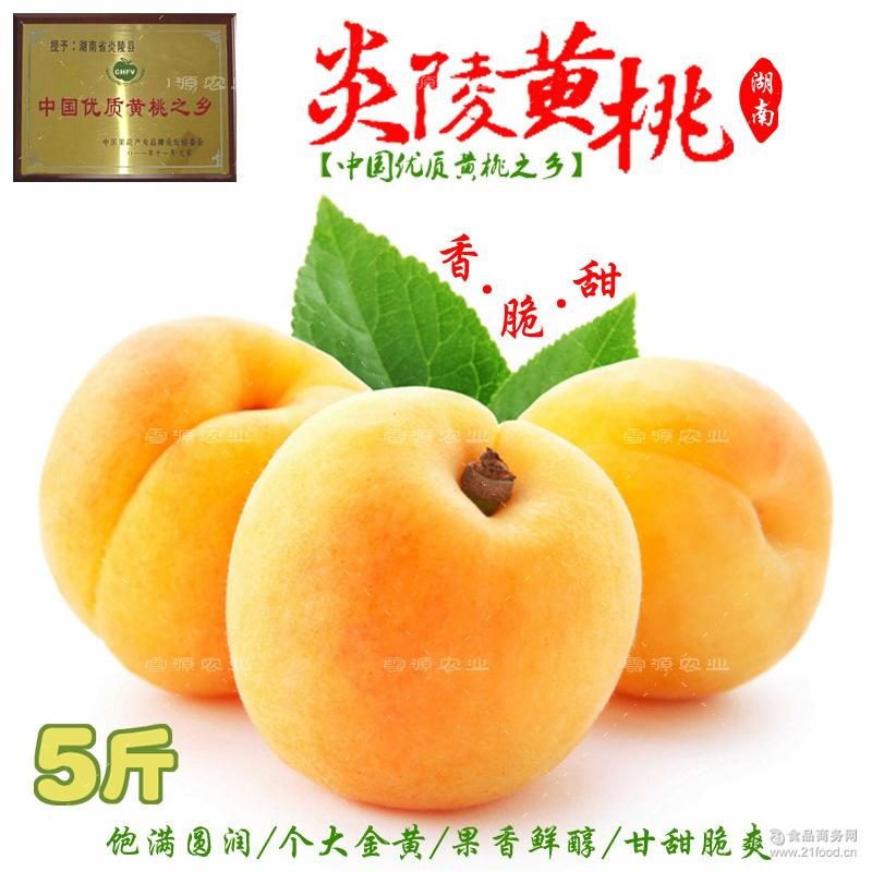 新鲜水果桃子正宗农家现摘现发蜜桃产地直供锦绣黄桃5斤 炎陵黄桃