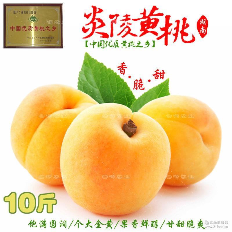 炎陵黄桃新鲜水果桃子锦绣黄桃正宗农家蜜桃现摘现发产地直供10斤