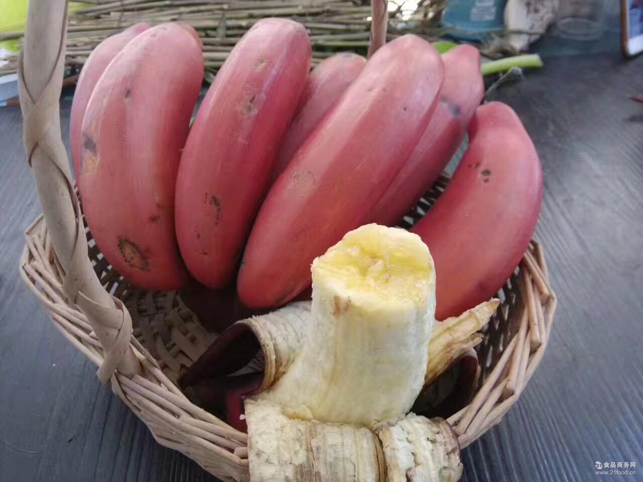 美人蕉南靖土楼特产红皮香蕉 新鲜水果火龙蕉非药水催熟5斤一件代