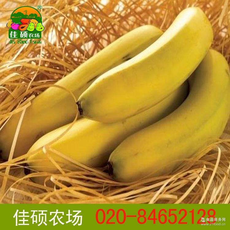 香粉甜 绿色有机种植香蕉 佳硕农场