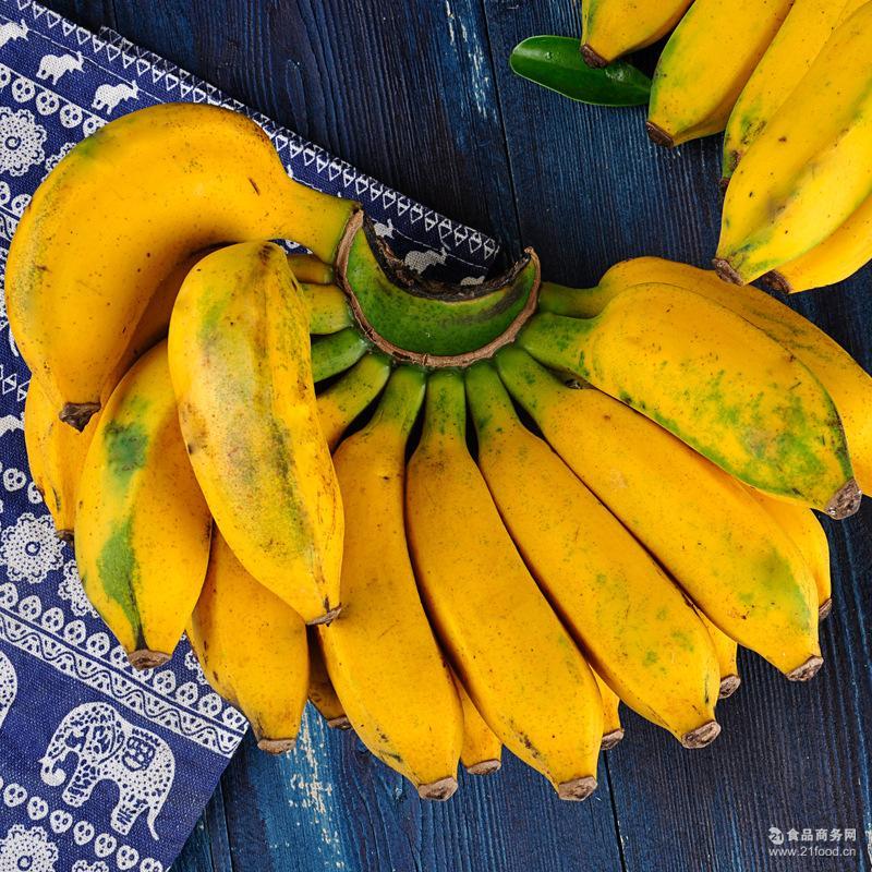 热带水果帝王蕉批发 供应广西涠洲岛新鲜应季小香蕉小米蕉