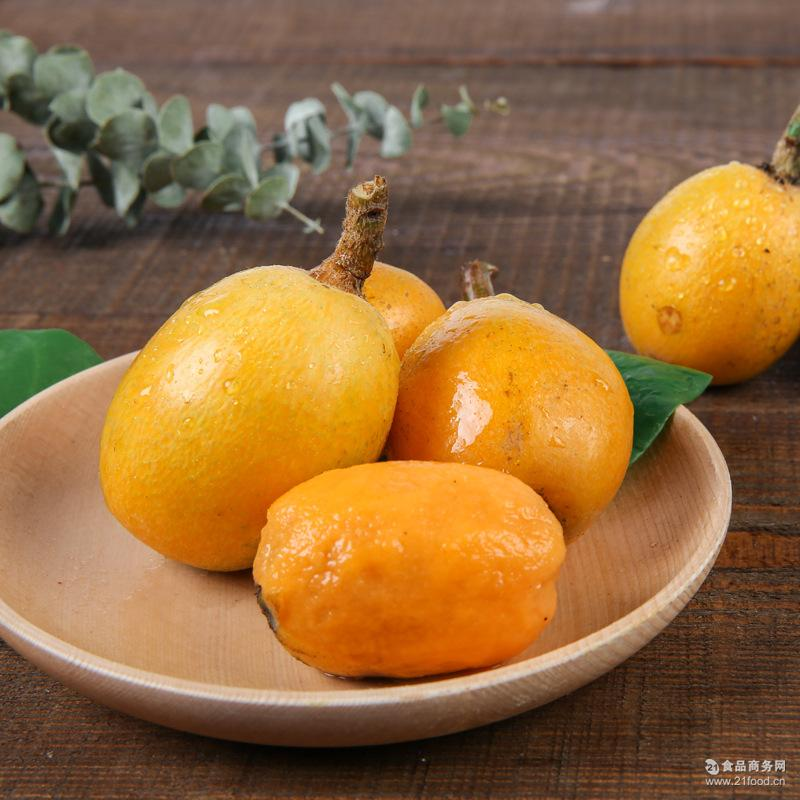 农场批发新鲜水果生态大五星枇杷四斤装现摘现发果园直供量大从优
