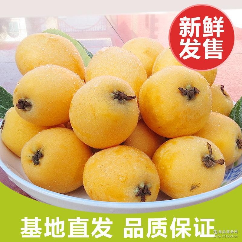 优质 夏季产地直发量大从优果大味儿正3公斤 枇杷 云南 新鲜水果