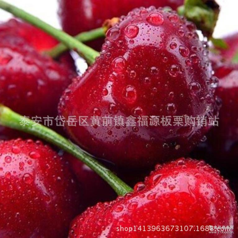 红灯 新鲜水果孕妇儿童* 车厘子 大樱桃