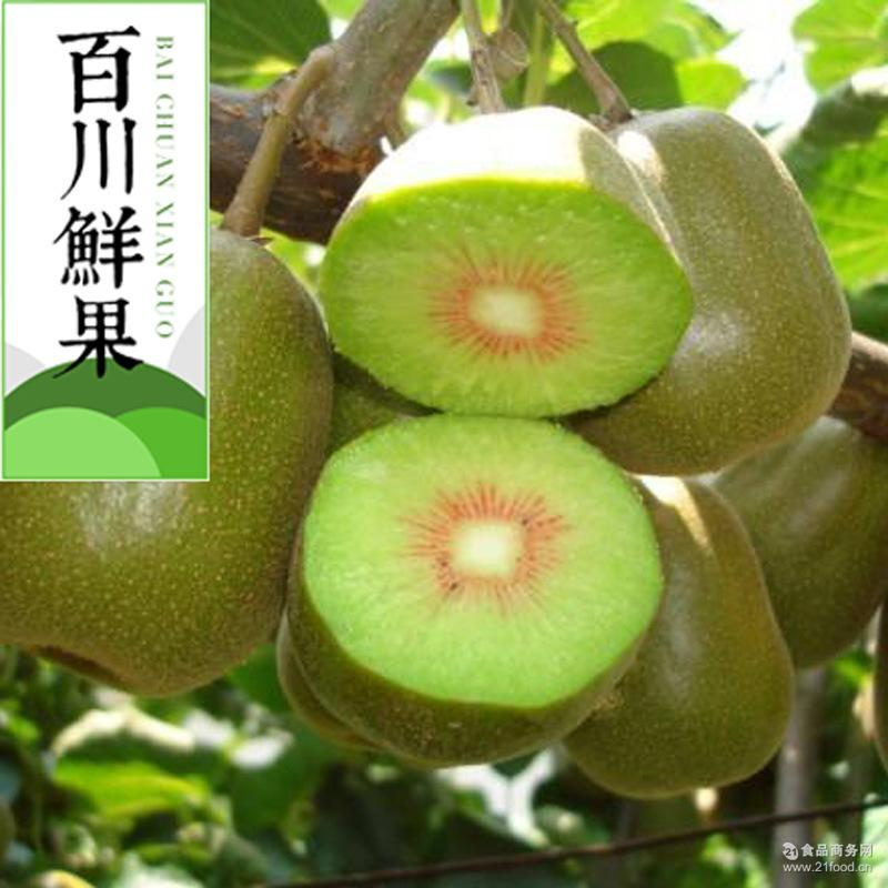 新鲜水果红心猕猴桃 五斤包邮 批发 百川鲜果 四川猕猴桃奇异果