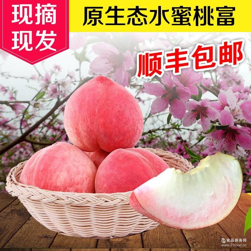 预售 现摘新鲜 5斤左右9个装包邮 无公害水果新鲜桃子 现摘水蜜桃