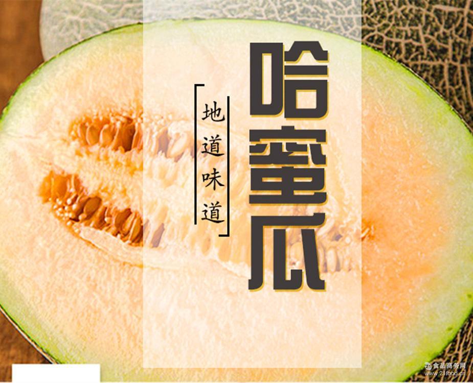 应季水果 敦煌密瓜 顺丰包邮 4~5斤 银蜜瓜 香瓜甜瓜原产地直发