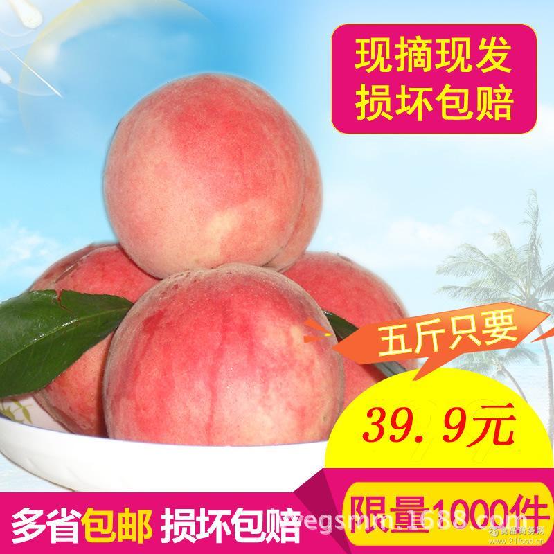 厂家直销预售春雪桃 突围桃 黄金蜜桃全程有机无公害 水蜜桃