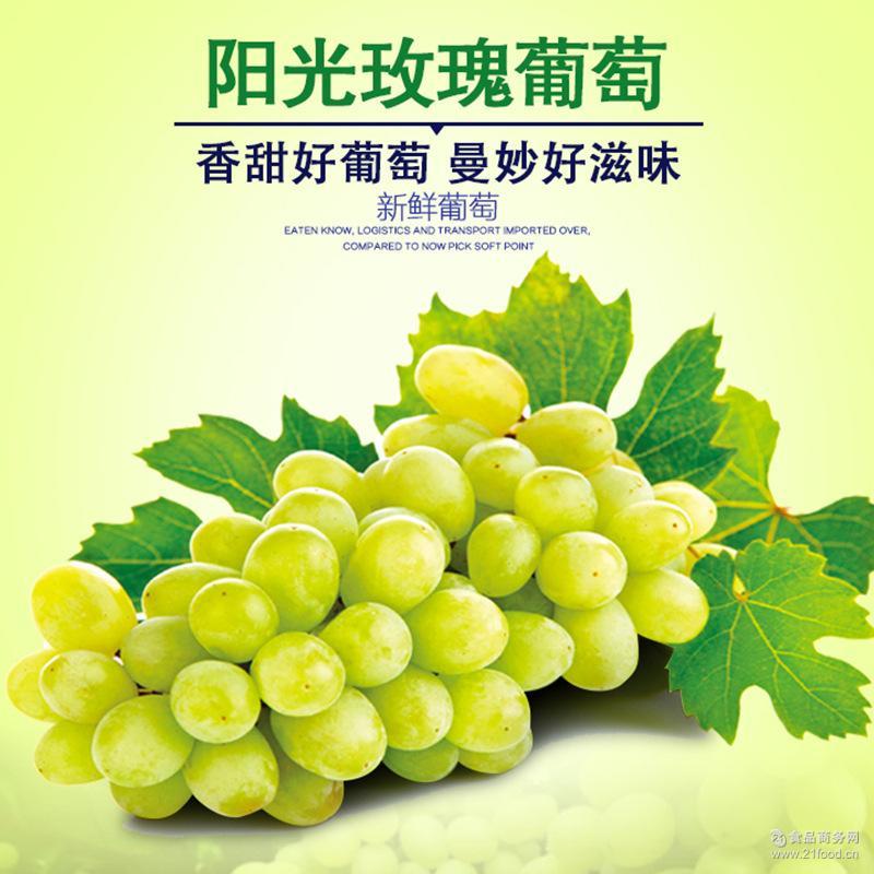 阳光玫瑰葡萄 鲜脆多汁香味怡人新鲜葡萄礼盒装四川省内顺丰包邮