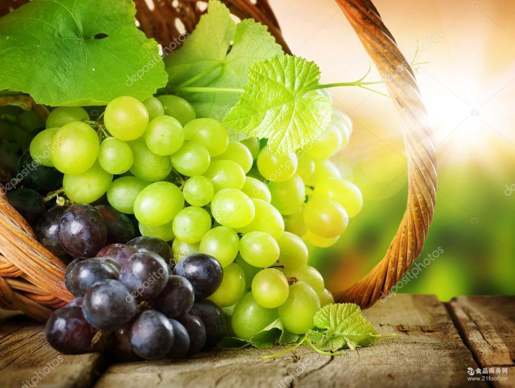 新疆吐鲁番新鲜葡萄批发 5斤 新疆无核白葡萄吐鲁番葡萄 新鲜提子